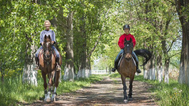Best Places For Horseback Riding In Cleveland – CBS Cleveland
